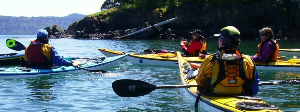 Sea Kayak Lessons in WildCat Cove