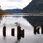 Lake Whatcom - Lumber Pilings
